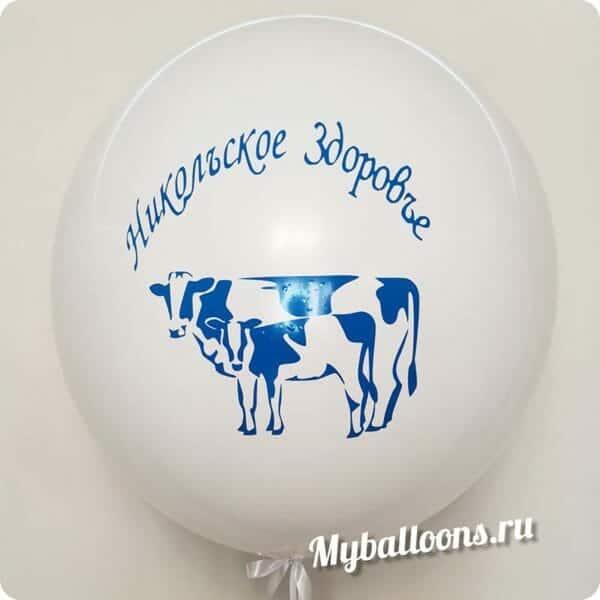 метровый шар с коровой и надписью